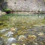 River 2 1 800x600