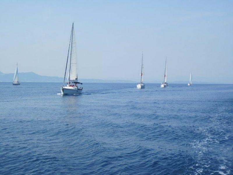 Sailing20081 800x600