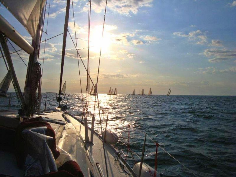 Sailing20121 800x600