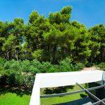 pool garden01 800x600